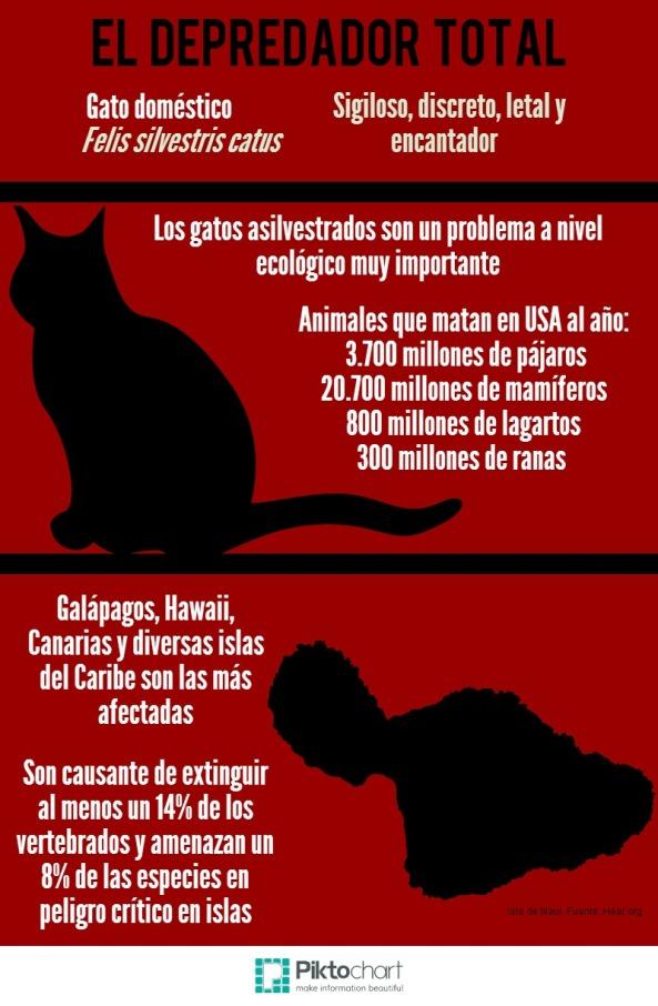 Efecto de los gatos en las islas