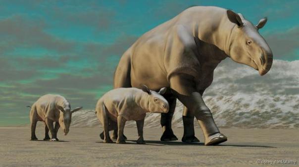 Recreación de un grupo de Paraceratherium. Imagen de Corey Ford/Alamy