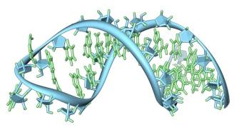 El RNA es uno de los dos tipos de material genético existentes, junto al DNA. Pero además, tiene funciones catalíticas, es decir favorece reacciones químicas necesarias para la vida. Algunos científicos respaldan la hipótesis que el RNA fue la molécula necesaria al principio de la vida porque hacía las funciones de almacenamiento genético y las que actualmente llevan a cabo las proteínas, todo en uno. Con el tiempo, aparecieron las proteínas y el DNA y ocuparon parte de sus funciones iniciales. Imagen de UCL Mathematical and Physical Sciences.