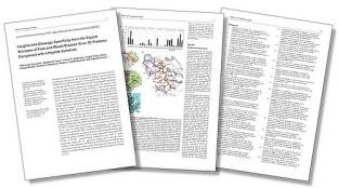 Los preprints son versiones de los artículos antes de ser revisados, de manera que son diferentes a las versiones finales, aunque los resultados sean los mismos. Imagen de Stephen Curry. https://www.flickr.com/photos/sc63/4099658615/