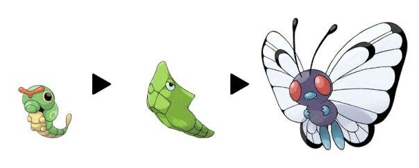 Imagen de la línea evolutiva de Caterpie: este es un ejemplo claro de larva, pupa y adulto, incluso en los Pokémon.