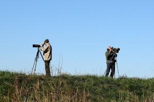 birdwatching ecoturismo conservación biodiversidad