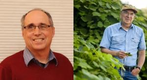 mark a davis vs daniel simberloff especies invasoras