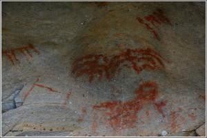 pinturas rupestres - especie